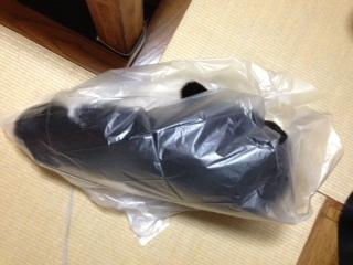 猫のお手伝い ゴミ捨て 行き止まり.JPG