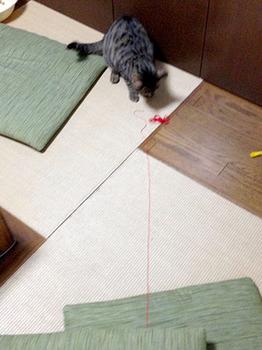 エルちゃんひもあそび 03おしりがぶつかるまで引っ張る.jpg
