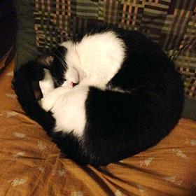 オットマンで寝る-1.jpg