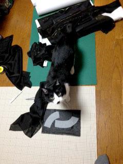 ドレスの邪魔猫 裁断した生地と保護色-1.jpg