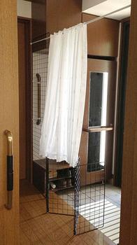 猫脱走防止 玄関 01カーテンを開けたところ.jpg